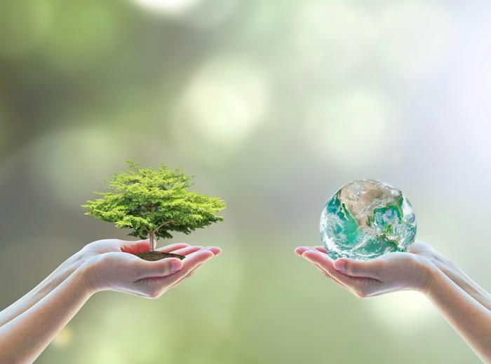 Avaliação ambiental confirmatória