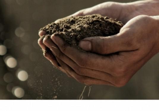 Empresas de consultoria ambiental em são paulo