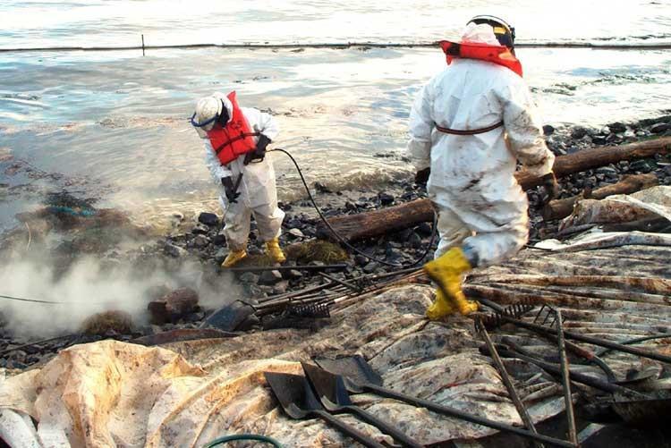 Relatório de impacto sobre o meio ambiente - rima