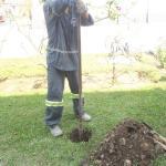 Empresas de remediação ambiental